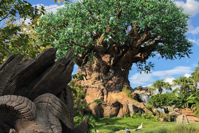 Storytelling in the Details: Disney's Animal Kingdom
